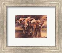 Family of Elephants Fine-Art Print