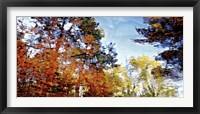 Harlow Creek Fine-Art Print