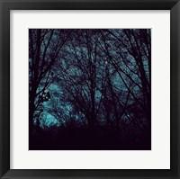 Nocturne III Fine-Art Print