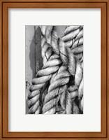 Tied Up I Fine-Art Print
