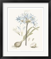 Bashful Blue Florals II Fine-Art Print