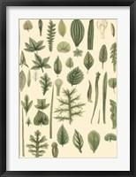 Abundant Foliage I Fine-Art Print