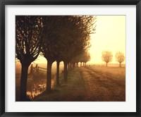 Misty Morning Fine-Art Print