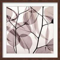 Eucalyptus Leaves [Positive] Fine-Art Print