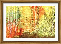 Autumn Color Fine-Art Print