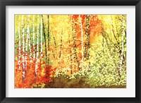 Autumn Color Fine-Art Print