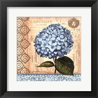 Hydrangea - mini Fine-Art Print