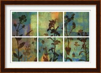Wild Flowers II Fine-Art Print