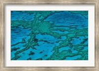 Grande Barrire de Corail Fine-Art Print