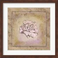Rose Square I Fine-Art Print