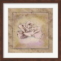 Rose Square II Fine-Art Print