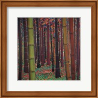 Magical Forest Fine-Art Print