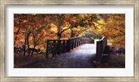 Autumn Overpass-Special Fine-Art Print