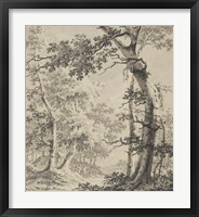 Wooded Landscape Fine-Art Print