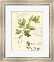 Aromatique I Fine-Art Print