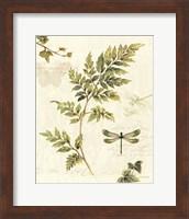 Ivies and Ferns III Fine-Art Print