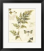 Ivies and Ferns III Fine-Art Print