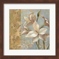 Amaryllis on Soft Blue Fine-Art Print