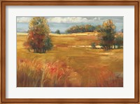 October Light Fine-Art Print