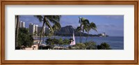 Palm trees on Waikiki Beach, Oahu, Honolulu, Hawaii Fine-Art Print