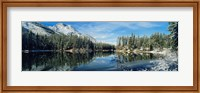 Reflection of trees in a lake, Yellowstone National Park, Wyoming, USA Fine-Art Print