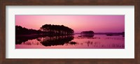 Panoramic View Of The National Forest During Sunset, Chincoteague National Wildlife Refuge, Virginia, USA Fine-Art Print