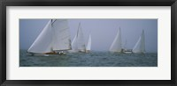 Sailboats at regatta, Newport, Rhode Island, USA Fine-Art Print
