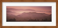 High angle view of a forest, St. Peter, Black Forest, Germany Fine-Art Print