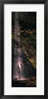 Waterfall in a forest, Columbia Gorge, Oregon, USA Fine-Art Print