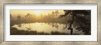 Reflection of trees in a lake, Vastmanland, Sweden Fine-Art Print
