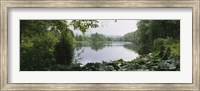 Forest and River, Sjolangs, Sweden Fine-Art Print