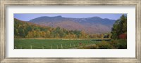 Woman cycling on a road, Stowe, Vermont, USA Fine-Art Print