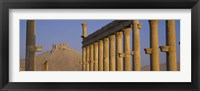 Low angle view of Great Colonnade, Palmyra, Syria Fine-Art Print
