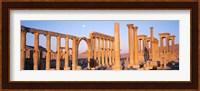 Ruins, Palmyra, Syria Fine-Art Print