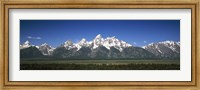Trees in a forest with mountains in the background, Teton Point Turnout, Teton Range, Grand Teton National Park, Wyoming, USA Fine-Art Print