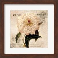 White Peony I Fine-Art Print