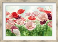 Poppies Pleasure Fine-Art Print