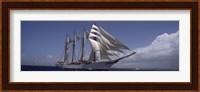 Tall ship in the sea, Puerto Rico Fine-Art Print