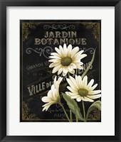 Botanical Collection I Fine-Art Print