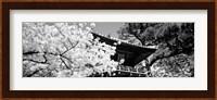 Golden Gate Park, Japanese Tea Garden (black & white) Fine-Art Print