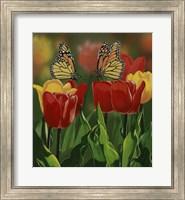 Monarchs And Tulips Fine-Art Print