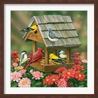 Backyard Birds Fall Feast Fine-Art Print