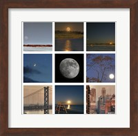 Luna - squares Fine-Art Print