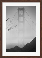 Golden Gate Pier and Birds II Fine-Art Print