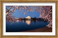 Cherry Blossom Tree with Jefferson Memorial, Washington DC Fine-Art Print