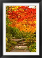 Stone steps in a forest in autumn, Washington State, USA Fine-Art Print