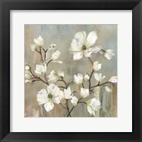 Sweetbay Magnolia II Fine-Art Print