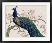 Peacock & Blossoms II Fine-Art Print