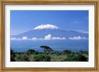 Africa, Tanzania, Mt Kilimanjaro, landscape and zebra Fine-Art Print