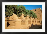 Sphinxes, Temple of Karnak, Temple of Luxor, Avenue of Sphinxes, Luxor, Egypt Fine-Art Print